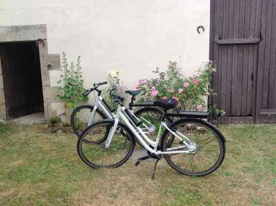 e-bikes