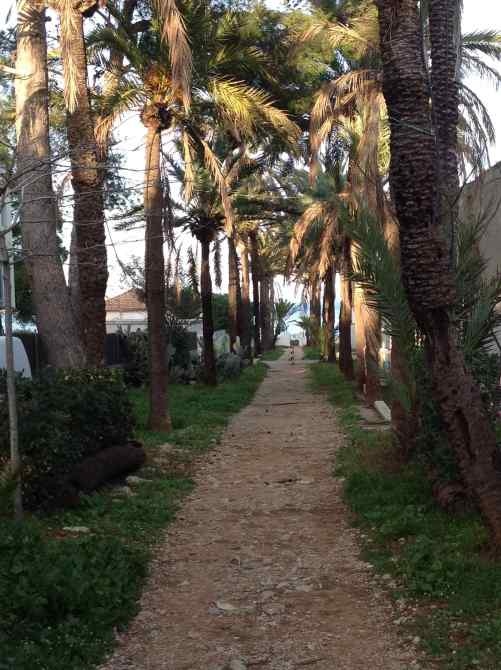 Pinos path to beach
