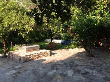 milina garden