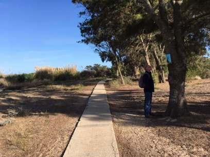 Pedras walk