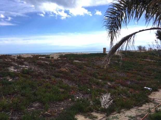mont roig dune